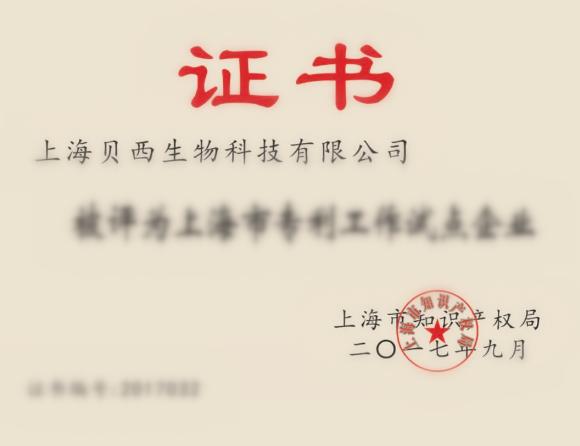 "title='<div style=""text-align:center;""> 专利试点企业证书 </div>'"